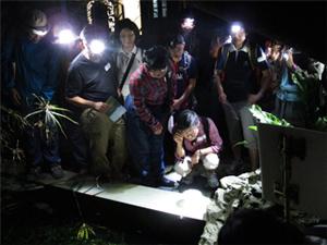 Night Safari in Lung Fu Shan